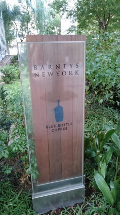 blue bottle 3.JPG